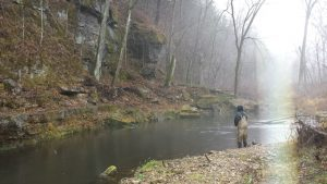 North Bear fishing 300x169 - Services - Driftless Fishers