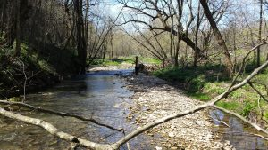 spring fishing 1 300x169 - More Info - Driftless Fishers