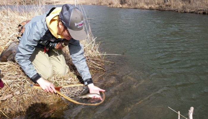 new5 700x400 - Driftless Fishers Photo Gallery